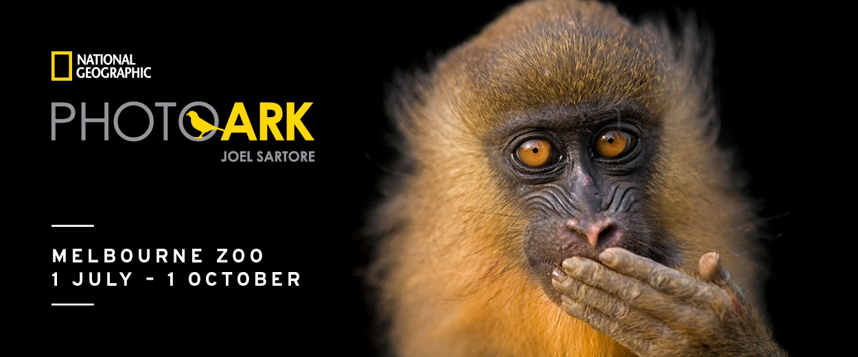 National Geographic Photo Ark Exhibition