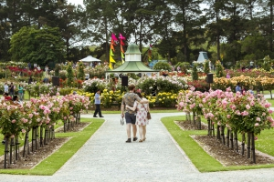 State Rose and Garden Show 2017