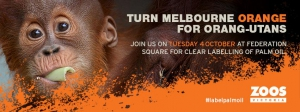 Turn Melbourne Orange