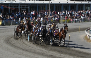 Warragul Cup trotting races Easter Sunday