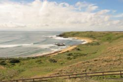 Phillip Island: A Nature-Lover's Paradise