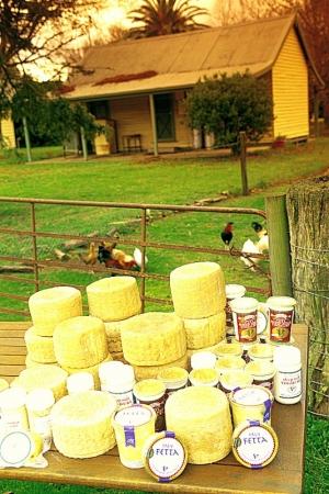 Grampians Pure Cheese Dairy