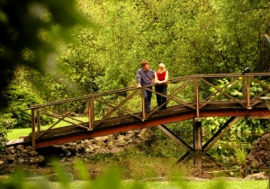 Hamilton Botanical Gardens : Bruzzone