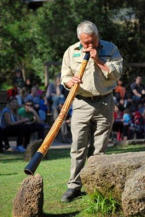 Indigenous didgeridoo