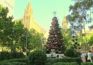 It's Christmas in Melbourne City Square