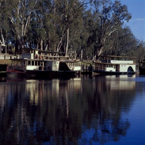 Paddle Steamers at Echuca