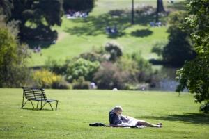 Royal Botanic Gardens : Mark Chew