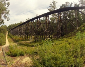 Wooden Bridge in Gippsland