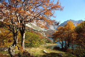 Autumn in ethno village Nevidio Montenegro