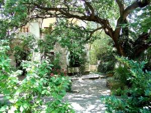 Greenery in the Hotel Dubrava Budva Montenegro