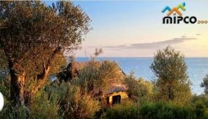 Montenegro Property Estate