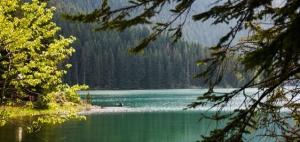 Durmitor Lake