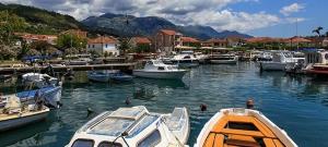 Town Marina