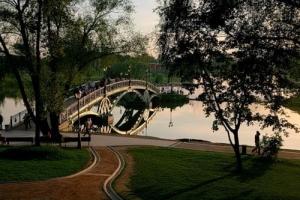 Bridge in Tsaritsino Estate
