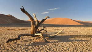 Namibia on a Self-Drive Holiday