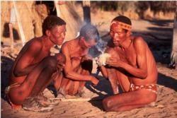 Bushmanland Area