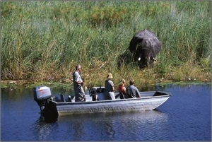 Boat Safari in Caprivi