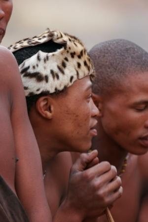Bushmen ceremonial head gear