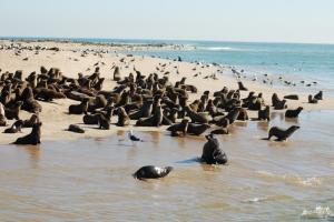 Swakop beach