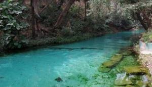 Yankari Game Reserve's natural spring