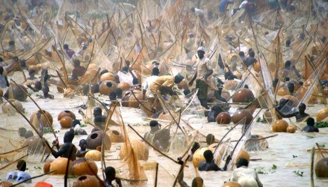 Argungu Fishing Festival is Coming this Year.