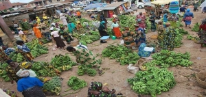Osun banana and plantain market