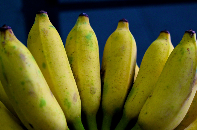 Water banana