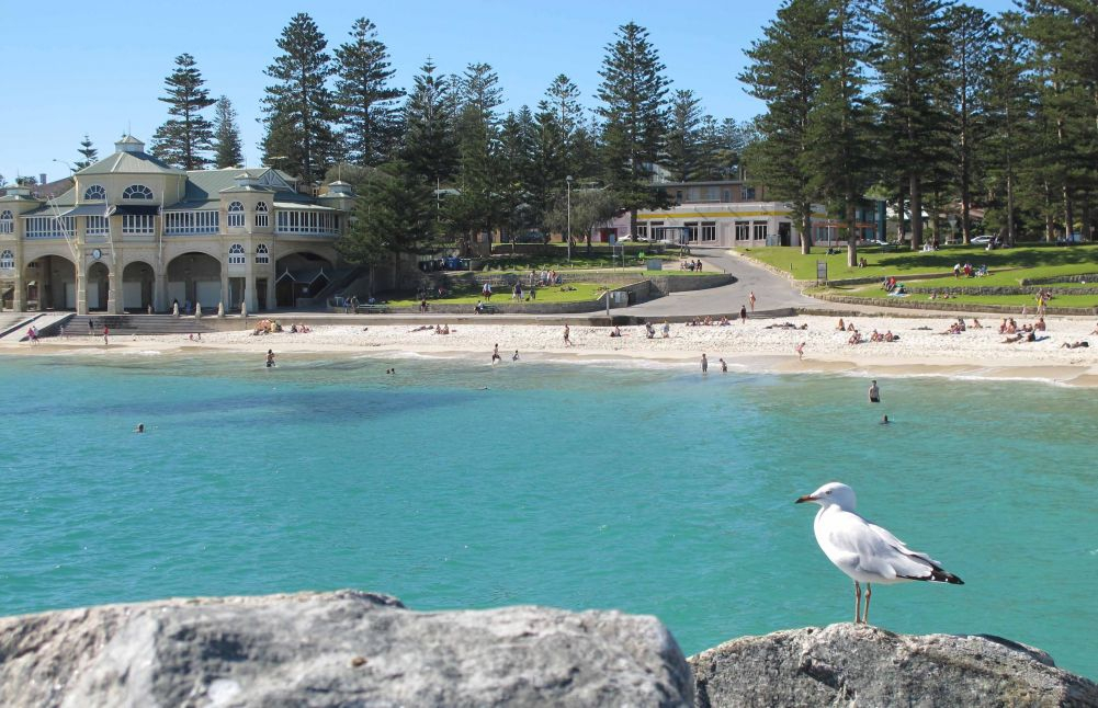 Cottesloe Beach from the groyne