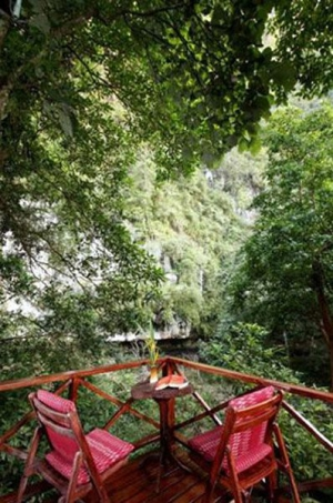 Have a seat & enjoy the view of the jungle!