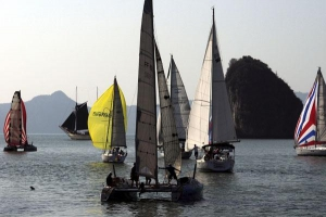 The Bay Regatta
