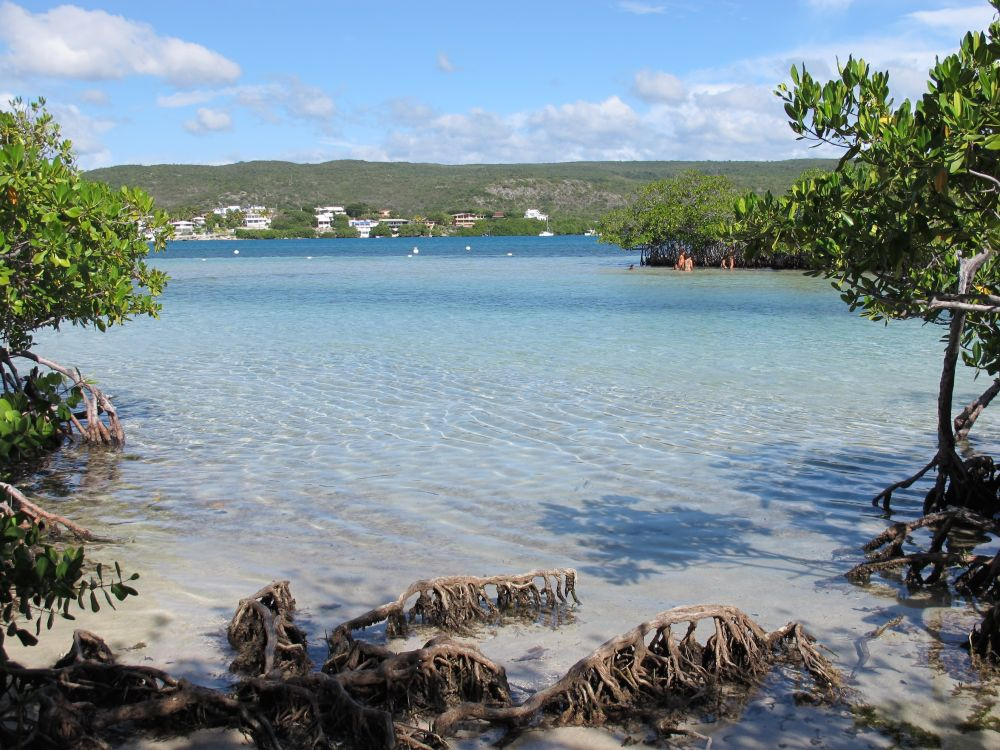 Things to Do in Guanica: An Adventurous Stopover | My Guide