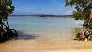 Things to Do in Guanica: An Adventurous Stopover