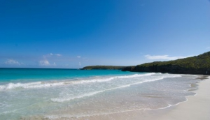 Vieques, Puerto Rico in 24 Hours