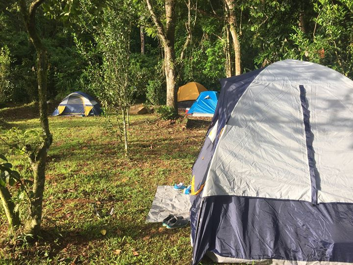 Firefly EcoCamping of Summer (July)