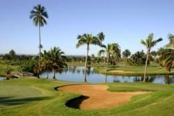Dorado Golf