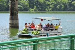 Boat taking passengers and supplies to restaurant on Dos Bocas Lake
