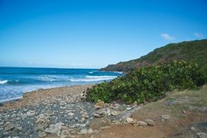 Coast at Cabezas de San Juan