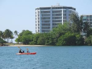 Kayaking in Lagoon, Condado, Puerto Rico