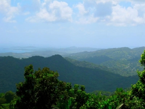 View of Luquillo, Puerto Rico from El Yunque