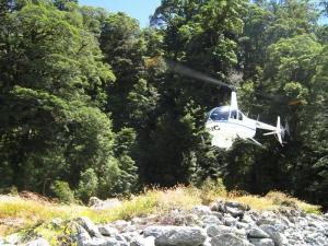 Brodrick & Landsborough Wilderness Experience