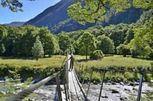 Blue Pools Nature Experience - Swingbridge