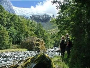 Guided Nature Walks - Rob Roy Glacier