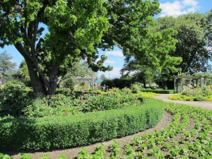 Pioneer Park Alexandra