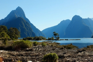 Milford Sound Discovery Tour