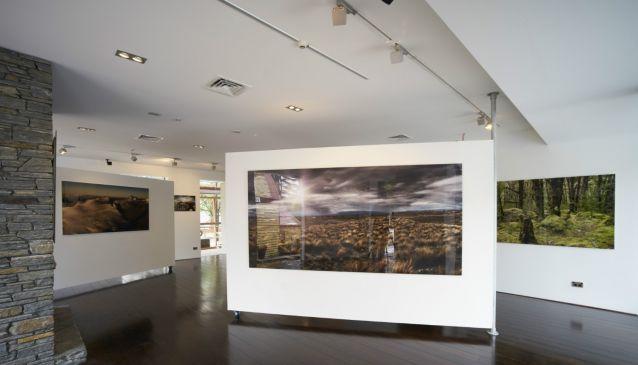 Romer Gallery