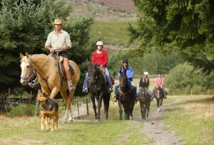 TSS Earnslaw Horse Trekking