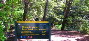 Mt Crichton Walk