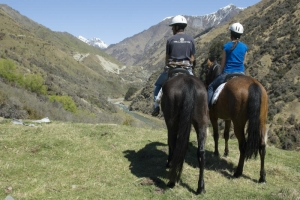 Ben Lomond Horse Treks