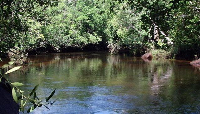 Una River (290 km)