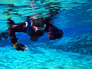 Dive.is - Snorkelling and Diving Tours